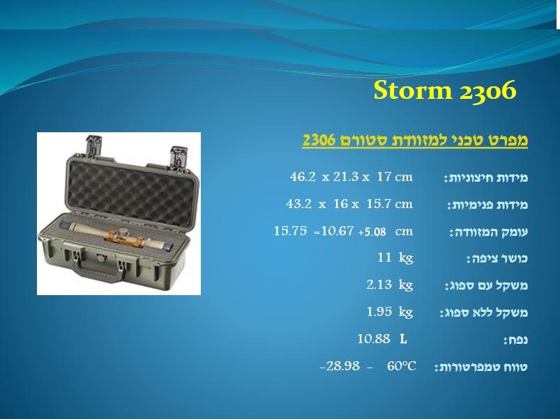 סטורם 2306 Storm
